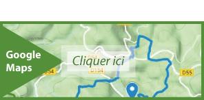 Carte Google Maps Q1